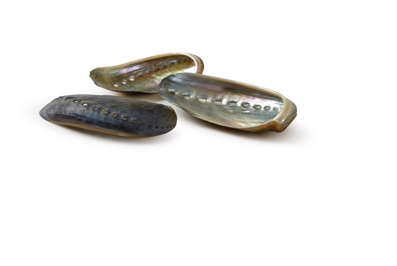 Granulati Zandobbio ciottoli di vetro ciottoli
