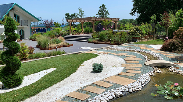 landscape design trends